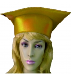 Different colored mortarboards, adult