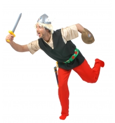 Viking asterix men costume